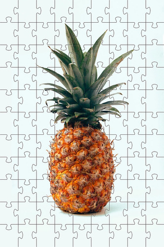 Quebra-cabeça 24 Peças Abacaxi Para Idosos Com Peças Grandes