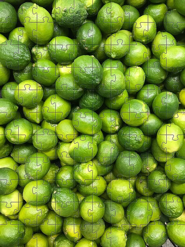 Quebra-cabeça 24 Peças Limão Para Idosos Com Peças Grandes