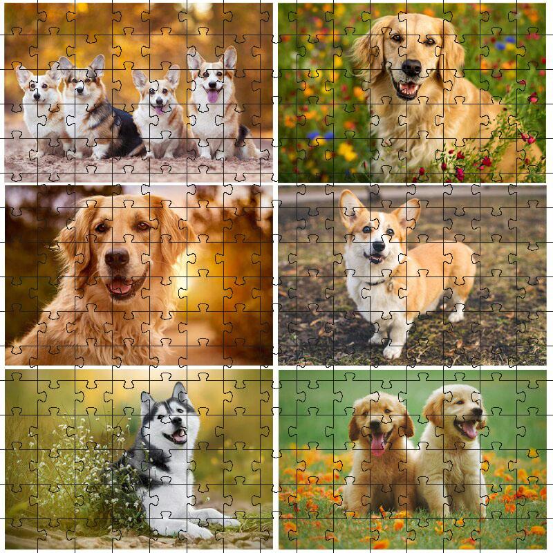 Quebra-cabeça Decorativo Pets Fofinhos de 300 peças
