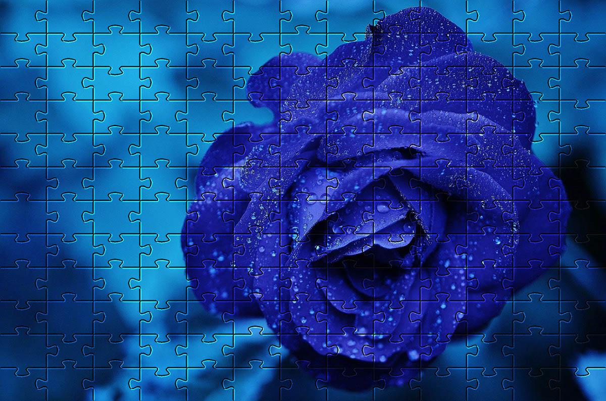 Quebra-Cabeça Flores Lindas Cognitivo Reabilitação para Idosos