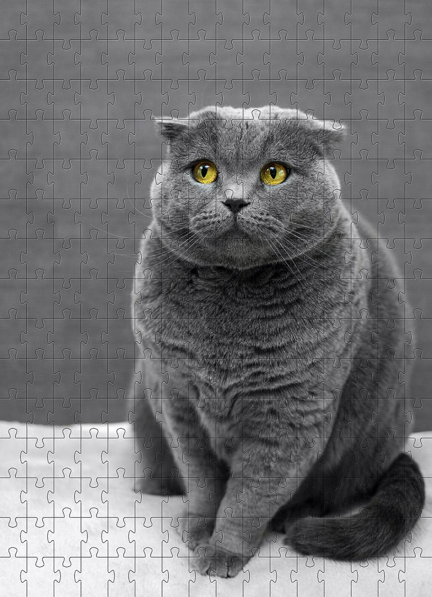 Quebra Cabeça Gato Angorá de 252 peças MDL02 + Chaveiro presente