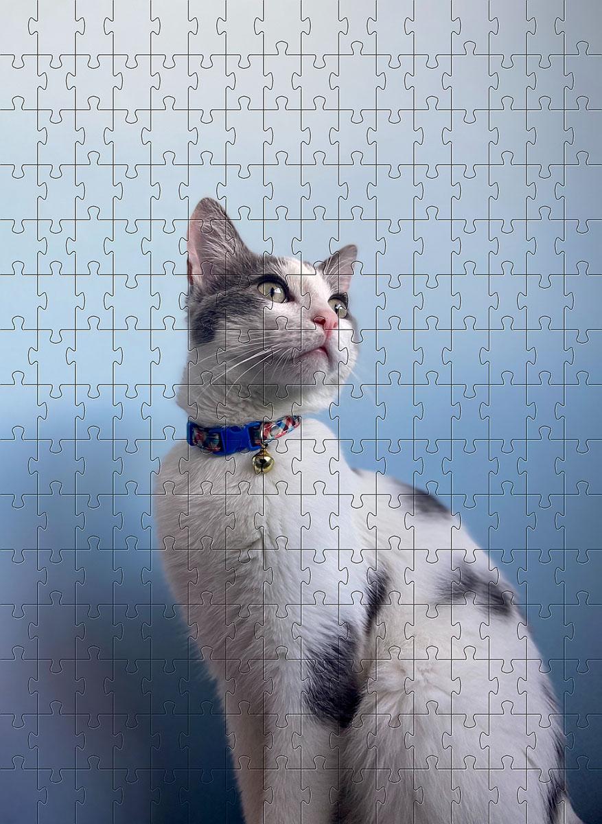 Quebra Cabeça Gato Branco de 252 peças MDL04 + Chaveiro presente