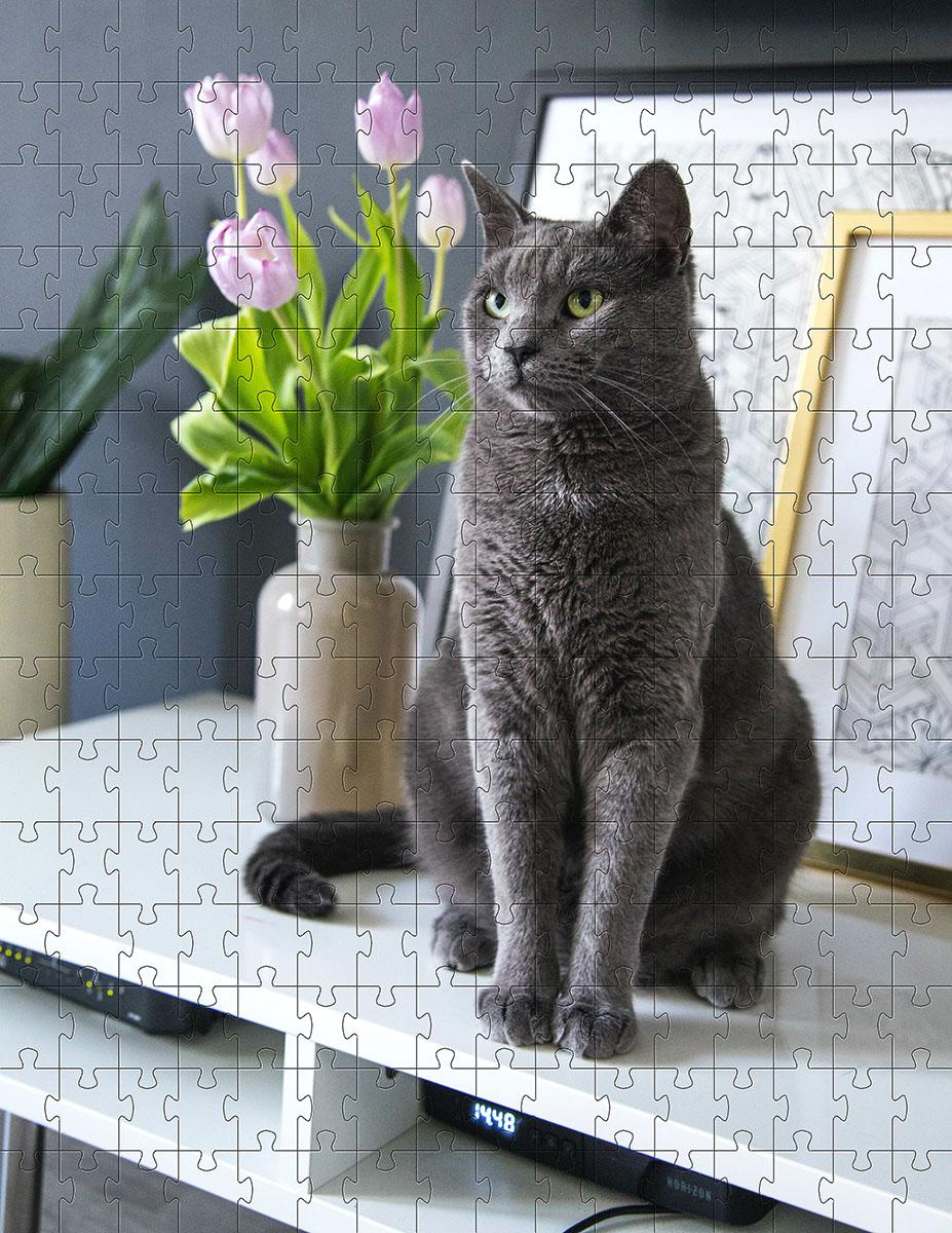 Quebra Cabeça Gato Cinza de 252 peças MDL03 + Chaveiro presente