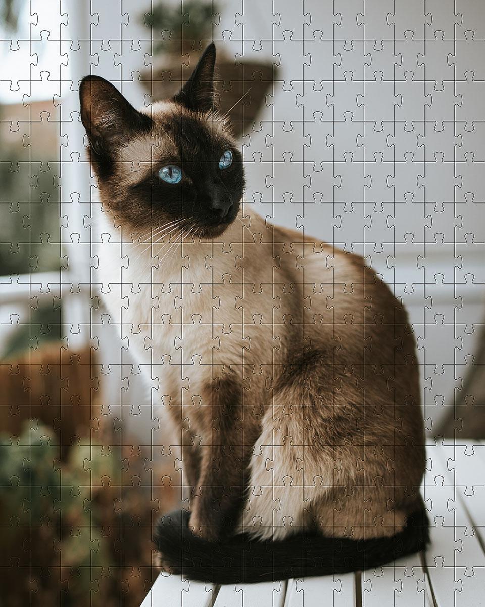 Quebra Cabeça Gato Siamês de 300 peças MDL05 + Chaveiro
