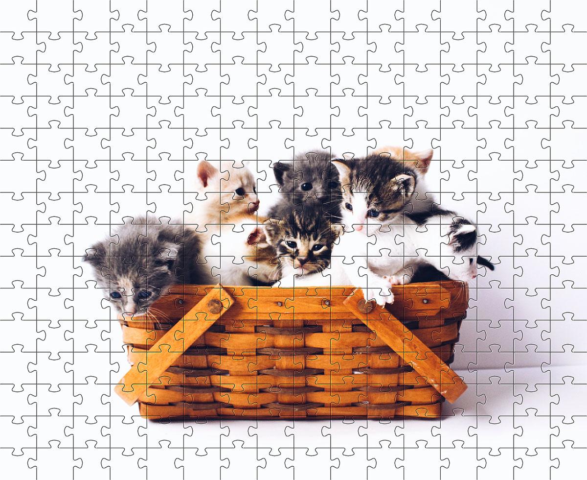 Quebra Cabeça Gatos Filhotes de 300 peças + Chaveiro MDL01