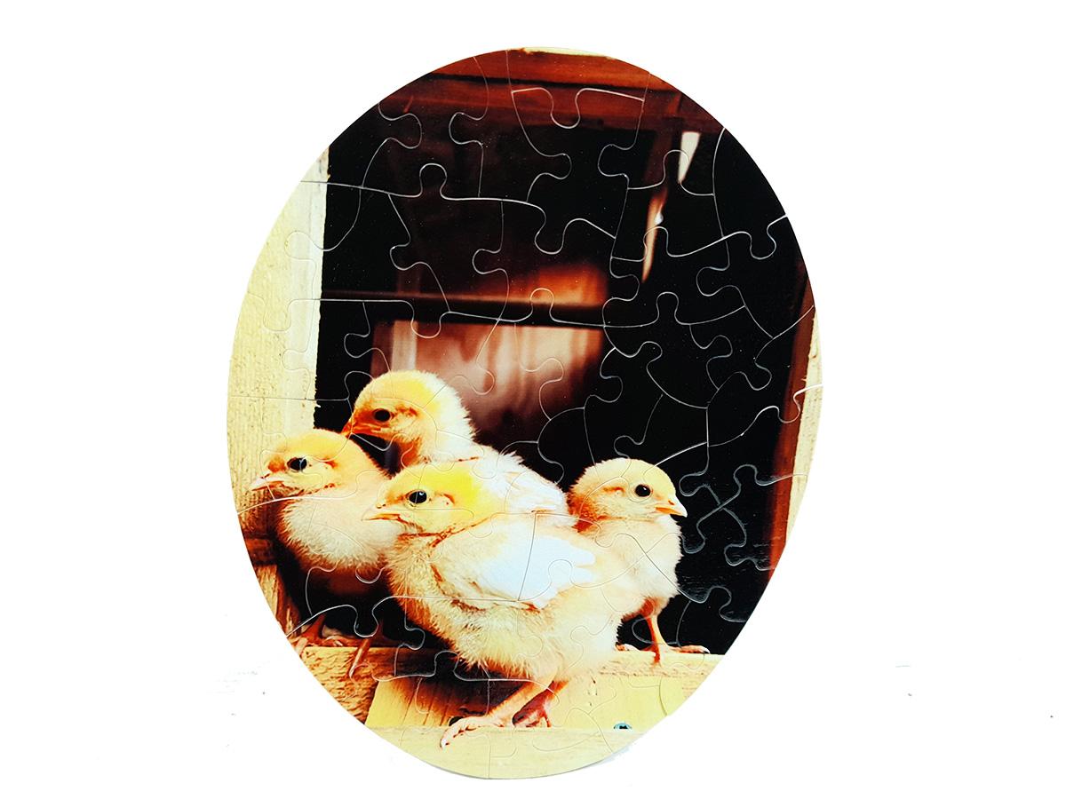 Quebra-Cabeça Oval Cognitivo para Idosos - Animais Fazenda - 51 peças