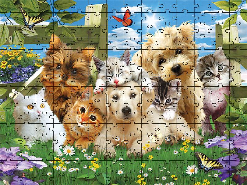 Quebra-cabeça Puzzle Filhotes Fofos de 300 peças