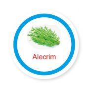 Ficha metálica de alimentos Alecrim