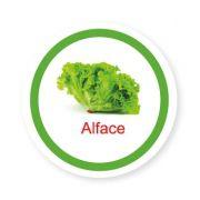 Ficha metálica de alimentos Alface