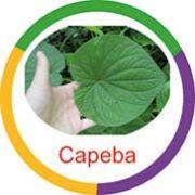 Ficha metálica de alimentos Capeba
