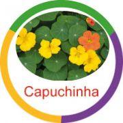 Ficha metálica de alimentos Capuchinha