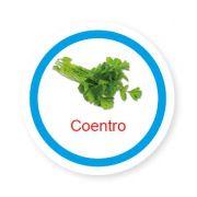 Ficha metálica de alimentos Coentro