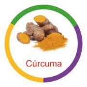 Ficha metálica de alimentos Curcuma Panc