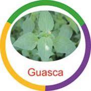 Ficha metálica de alimentos Guasca