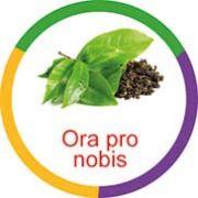 Ficha metálica de alimentos Ora Pro Nobis Panc