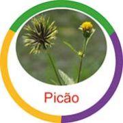 Ficha metálica de alimentos Picão