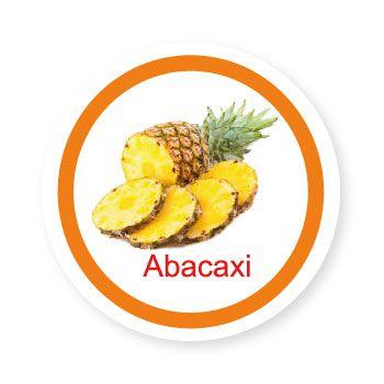 Ficha metálica de alimentos Abacaxi  - Divertimente