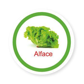 Ficha metálica de alimentos Alface   - Divertimente