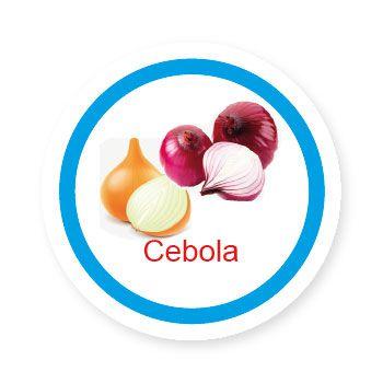 Ficha metálica de alimentos Cebola   - Divertimente
