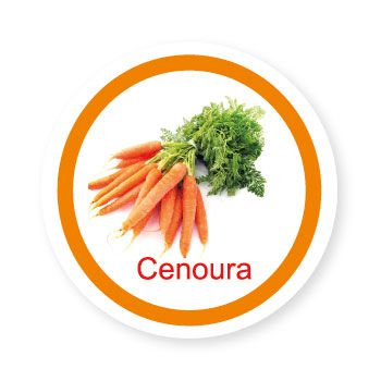 Ficha metálica de alimentos Cenoura   - Divertimente