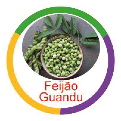 Feijão Gandu  - Divertimente