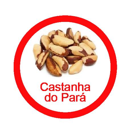 Ficha metálica de alimentos Castanha do Pará