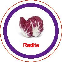 Ficha metálica de alimentos Radite
