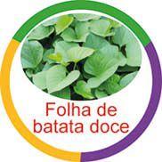 Ficha metálica de alimentos Folha de Batata Docê  - Divertimente