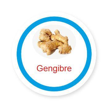 Ficha metálica de alimentos Gengibre   - Divertimente