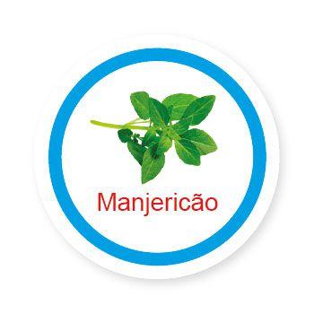 Ficha metálica de alimentos Manjericão   - Divertimente