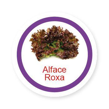 Ficha metálica de alimentos Alface Roxa  - Divertimente