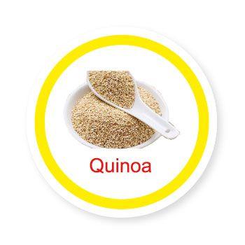 Ficha metálica de alimentos Quinoa   - Divertimente