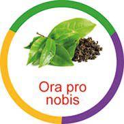 Ficha metálica de alimentos Ora Pro Nobis Panc  - Divertimente