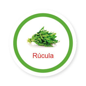 Ficha metálica de alimentos Rúcula  - Divertimente