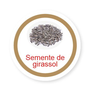 Ficha metálica de alimentos Semente de Girassol  - Divertimente