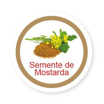Ficha metálica de alimentos semente de Mostarda   - Divertimente