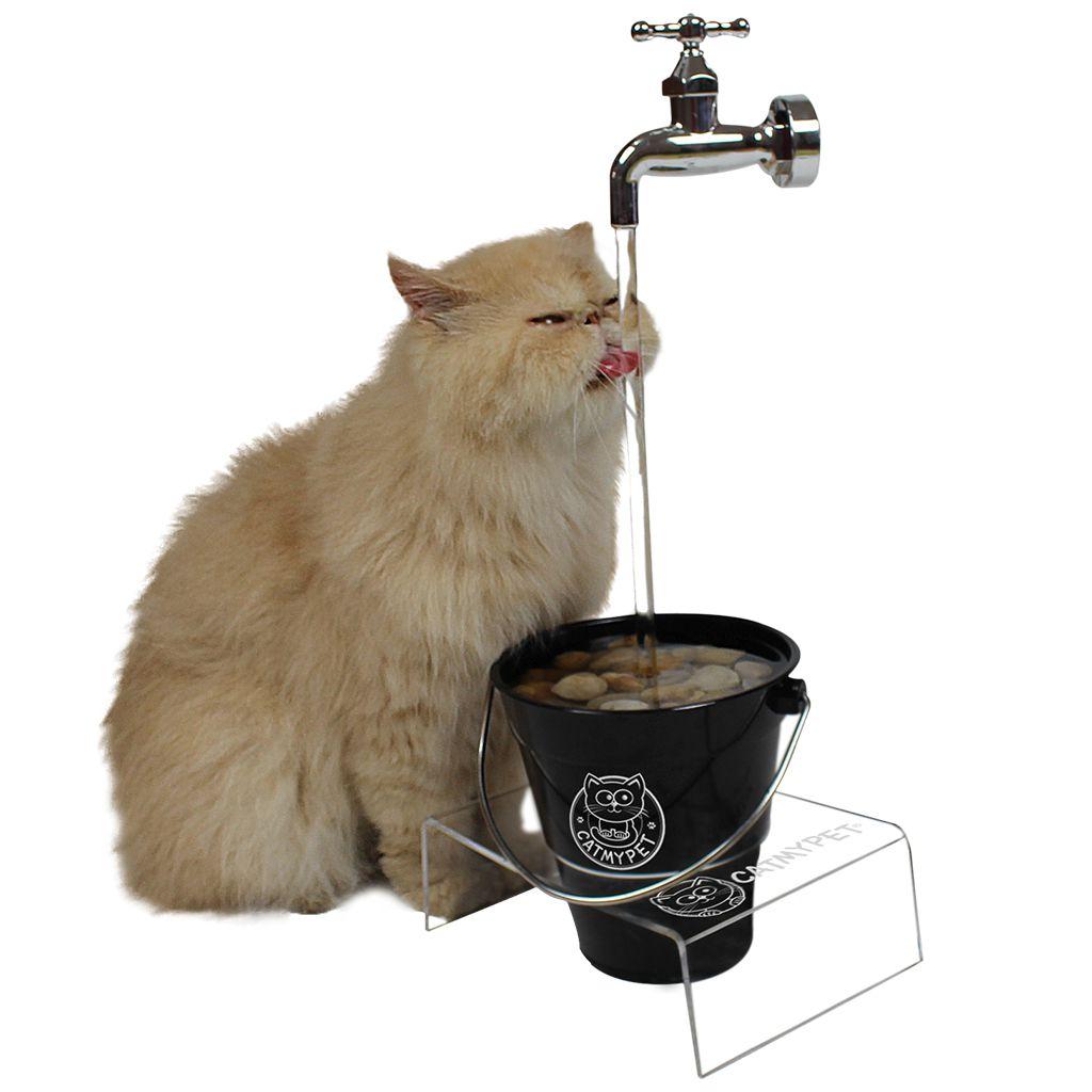Bebedouro Torneira para Gato Magicat BLACK 220v CatMyPet
