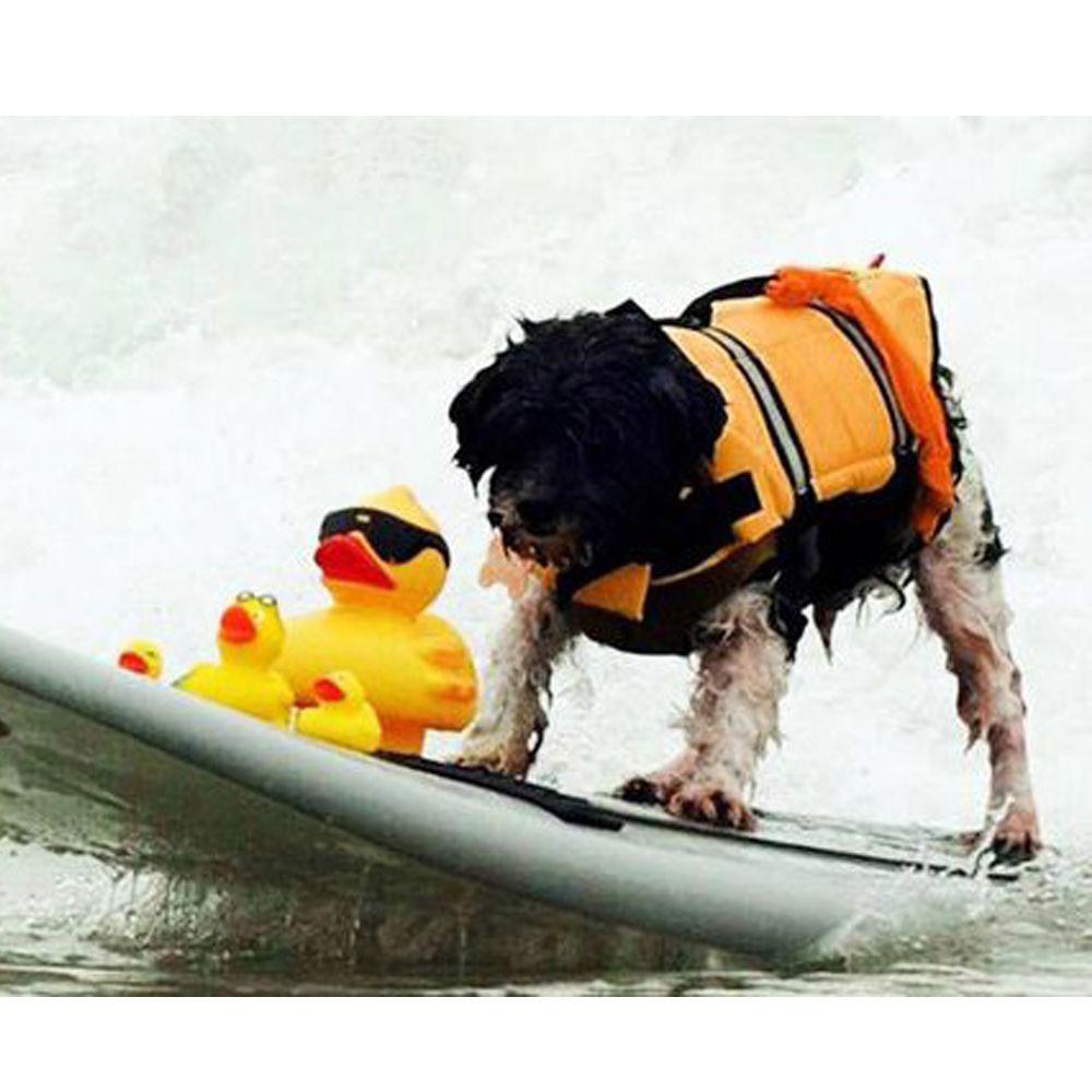 Colete Salva Vidas Para Pets Tamanho L - G
