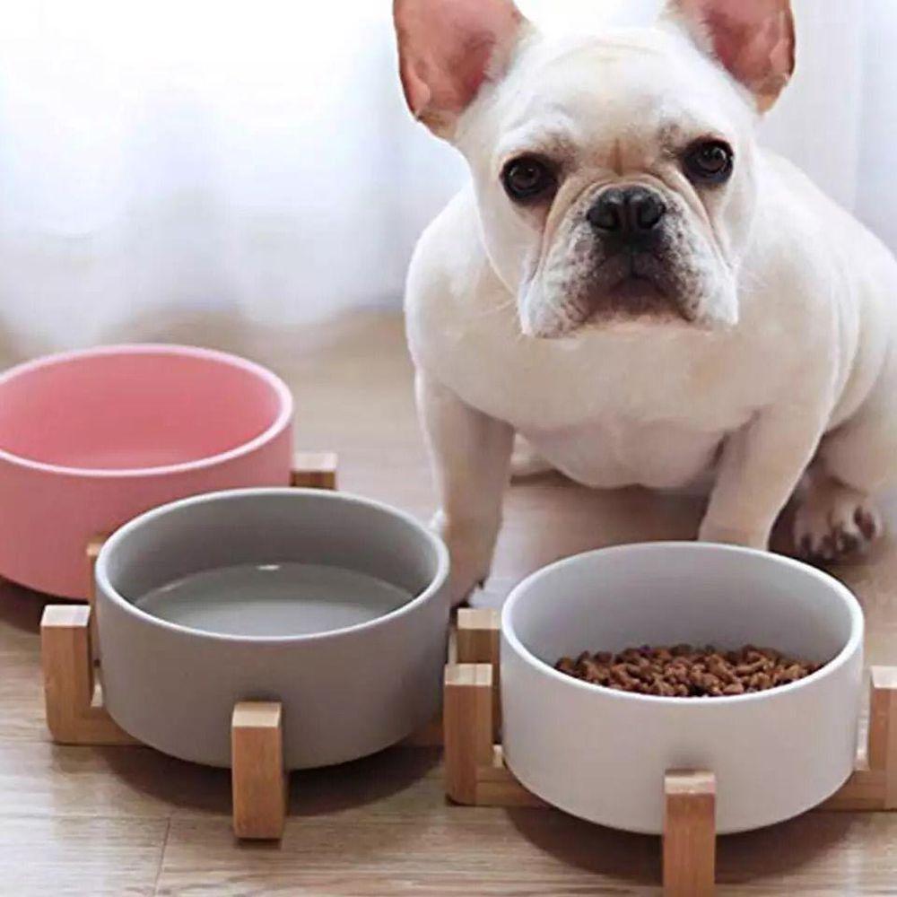 Comedouro Pet  em Ceramica Base em Bambu Wood Branco 500ml Cão Gato