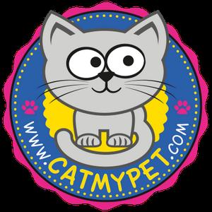 Snack Cat Preto Comedouro em Porcelana para Gatos