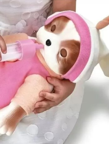 Coleção Bebê Pets Filhotinho Hora de dormi Roma 5840
