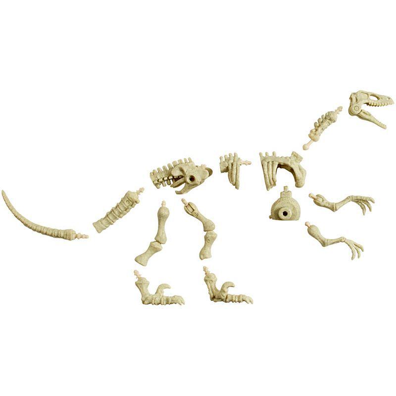 Jurassic World Esqueleto Velociraptor - Mattel - FTF03