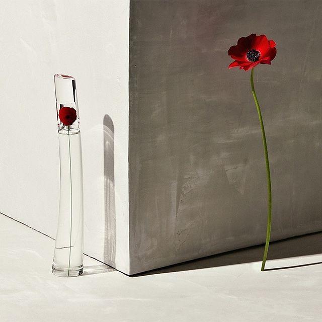 Perfume Flower by Kenzo Légère Feminino Eau de Toilette 30ml - Kenzo