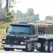 Emblema do Capô para Caminhão Scania T 112 113 142 143