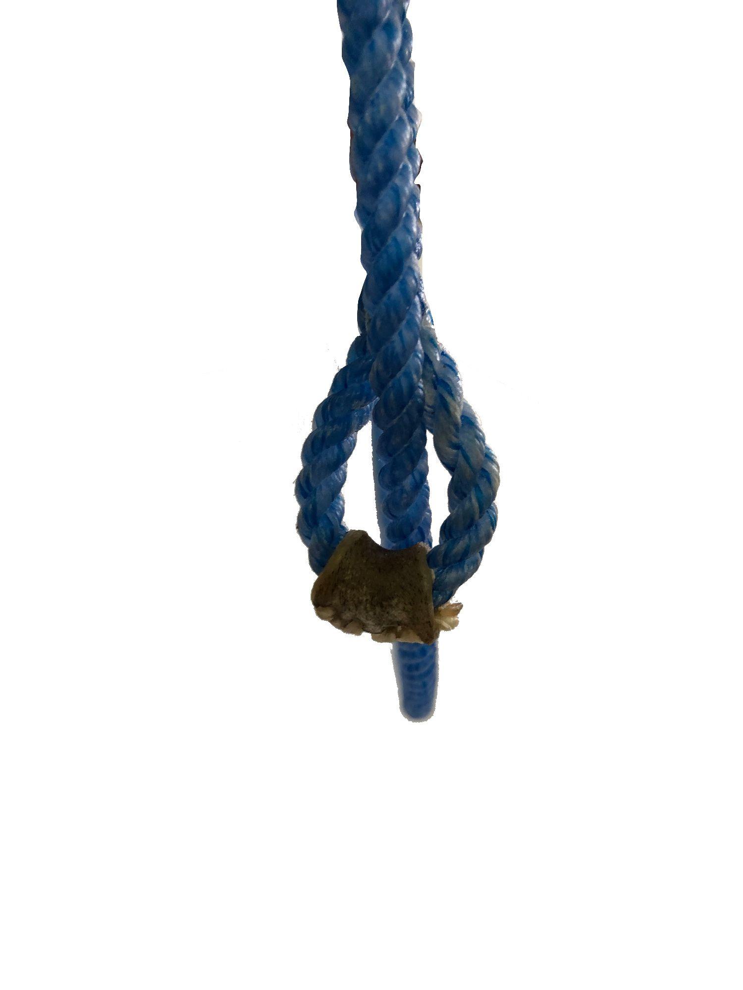 Peia Precision Ropes 1/4 Azul