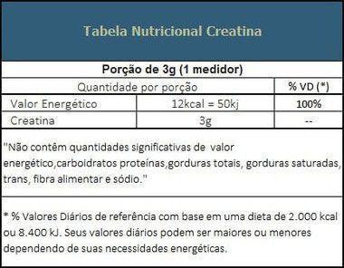 Creatina Pura 300g Probiótica  - Vitta Gold Nutrição Esportiva