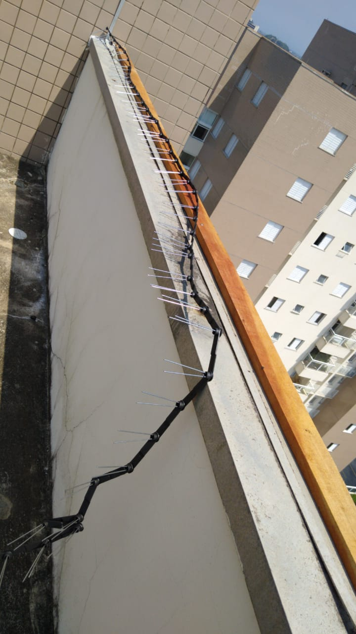 1 caixas Espícula reforçada Anti Pombo (14 metros lineares)
