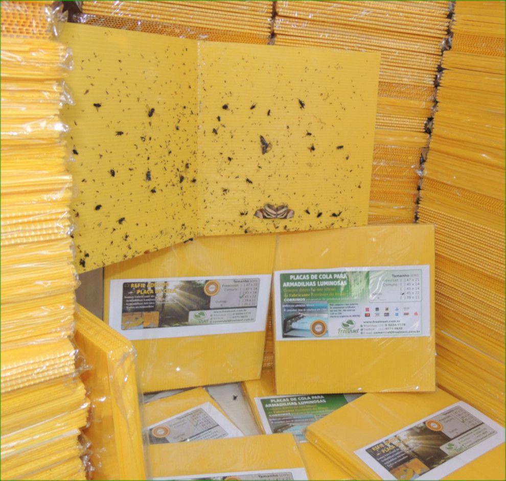 Kit 20 Refil Adesivo 39x10 cm Amarelo para Armadilha Matar Mosquitos
