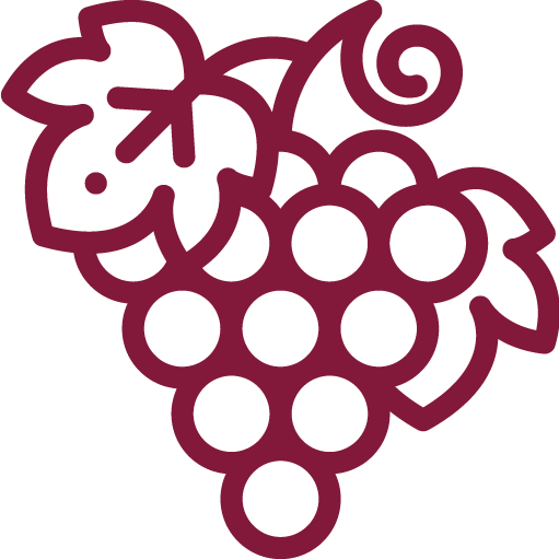Uva: Cabernet Sauvignon e Touriga Nacional