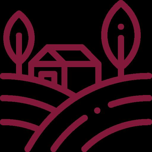 Vinícola: Agrícola Encostas de Sonim